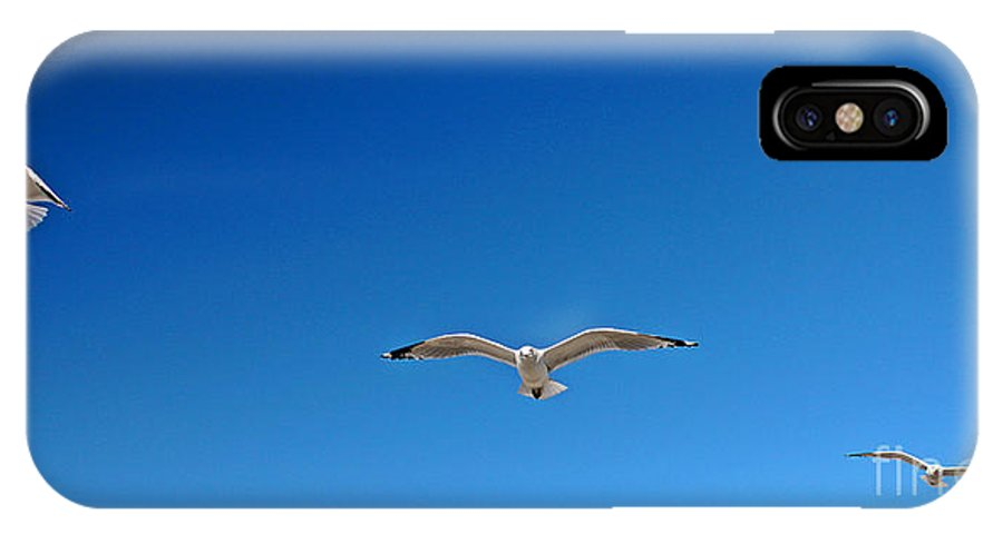 Seagulls IPhone X Case featuring the photograph Flight Pattern Vii Panoramic by Earl Johnson