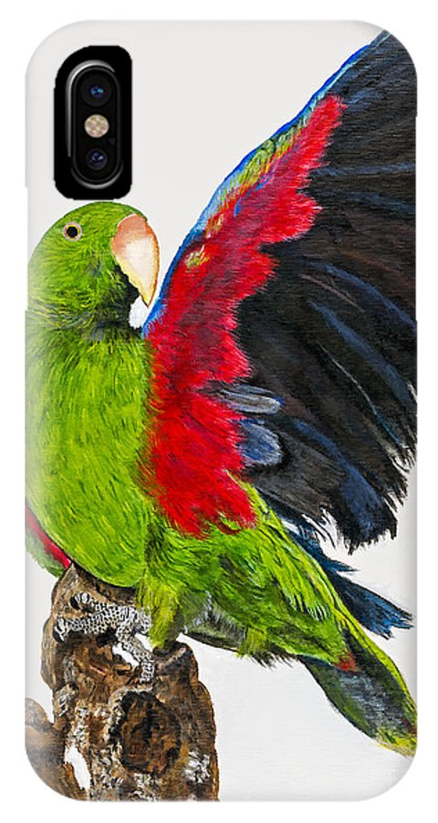 Parrot IPhone X Case featuring the painting Flirting Parrot By Barbara Heinrichs by Sheldon Kralstein