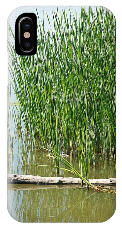 Log IPhone X / XS Case featuring the photograph Floating Log In A Marsh by Robert Hamm