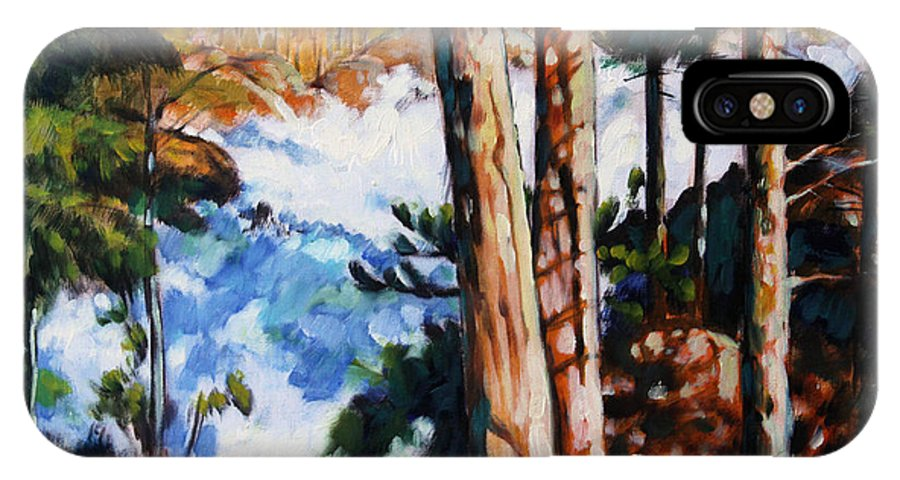 Stream IPhone X Case featuring the painting Flooded Stream - Colorado by John Lautermilch