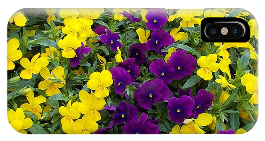 Flowers IPhone X / XS Case featuring the photograph Floral Cascade by Pamela Hyde Wilson