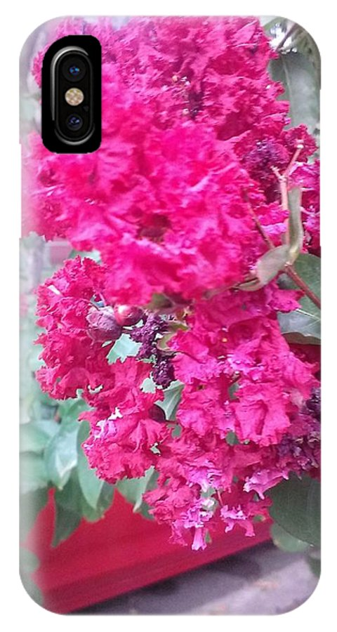 Pink IPhone X Case featuring the photograph Floral Fever by Davina Mckinnon