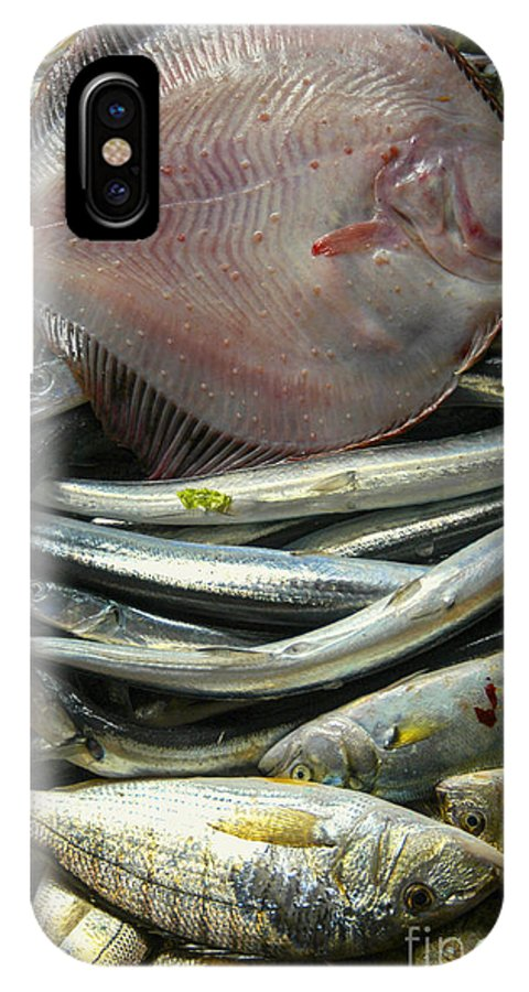 Istanbul Turkey Market Turkish Fish Markets Fishes Fresh Seafood Food Foods Flounder Flounders Still Life IPhone X Case featuring the photograph Floundering by Bob Phillips