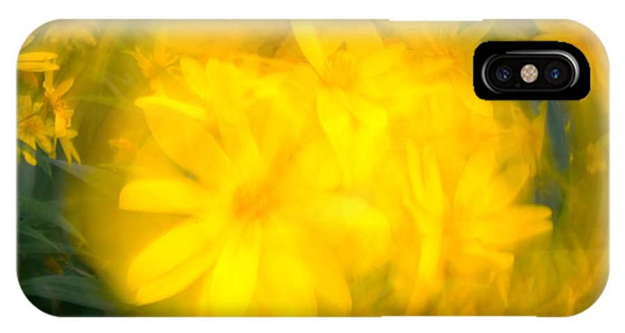 Abstract IPhone X Case featuring the photograph Flower Bowl by Jeffrey J Nagy