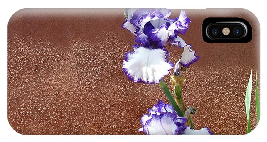 Flower IPhone X Case featuring the photograph Flower In The Sun by Steve Purifoy