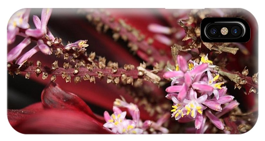 Pink IPhone X Case featuring the photograph Flower Power by Alexis Mariah