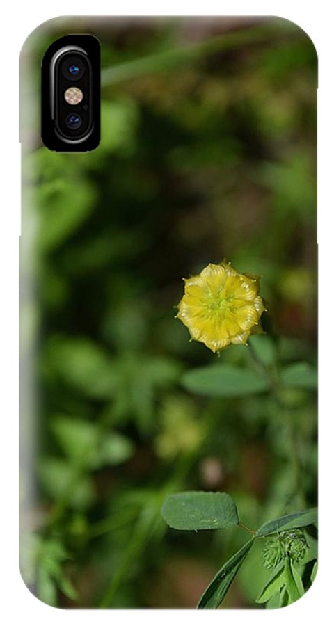 Flowers IPhone X / XS Case featuring the photograph Flowers 156 by Lawrence Hess