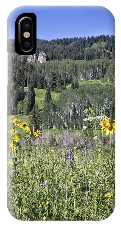 Colorado IPhone X Case featuring the photograph Flowers At Crested Butte by Timothy Hacker