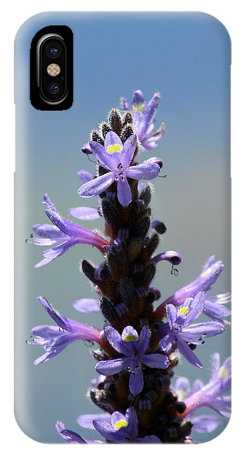 Flower Photography IPhone X Case featuring the photograph Flowers By The River by Neal Eslinger