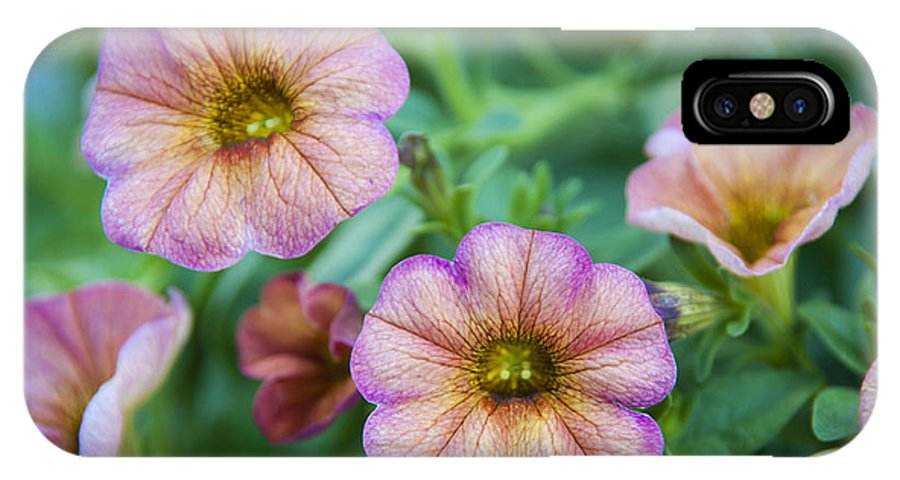 Flowers IPhone X Case featuring the photograph Flowers On The Beach by Scott Mullin