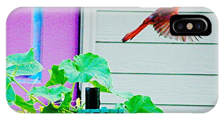 Bird IPhone X Case featuring the digital art Fly By by Lizi Beard-Ward