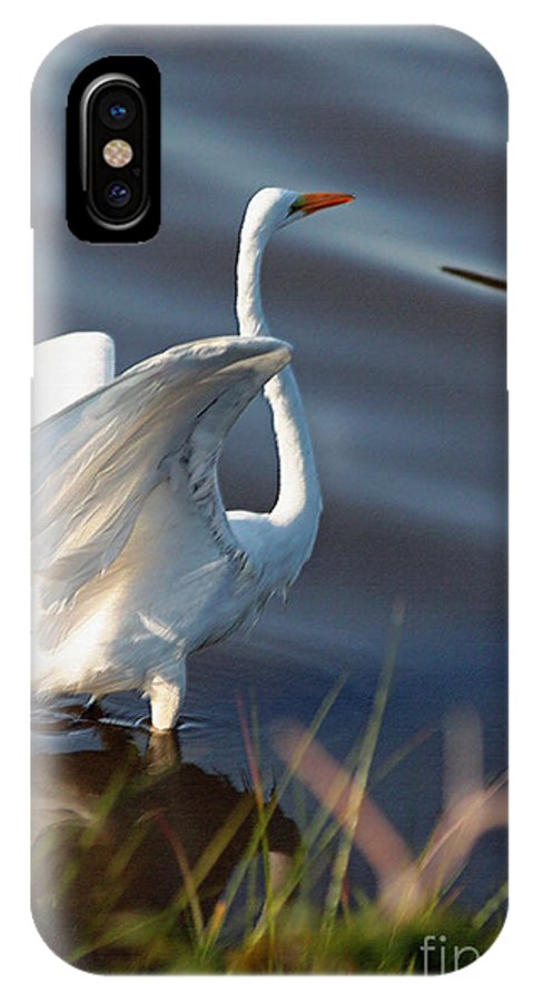 Bird IPhone X Case featuring the photograph Fly Fly Away by Suzanne Gaff