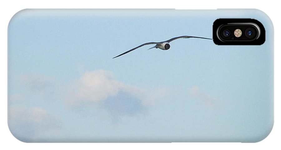 Ocean IPhone X Case featuring the photograph Flying High by Cheryl Smith
