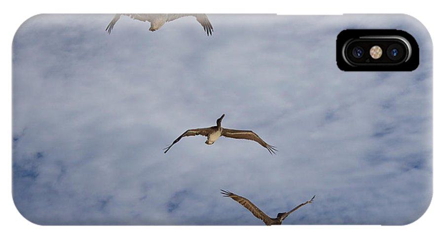 Flying Pelicans IPhone X / XS Case featuring the photograph Flying Pelicans by Genaro Rojas