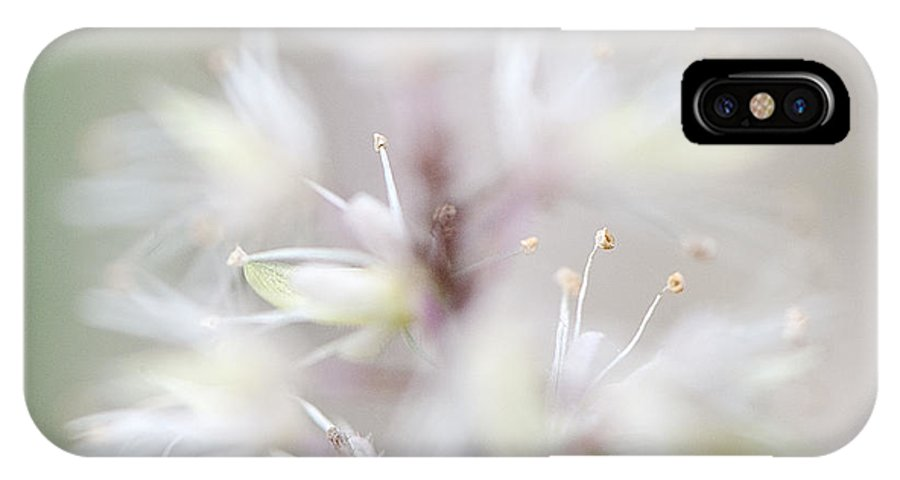 Lee Craig IPhone X Case featuring the photograph Foamflower Square by Lee Craig