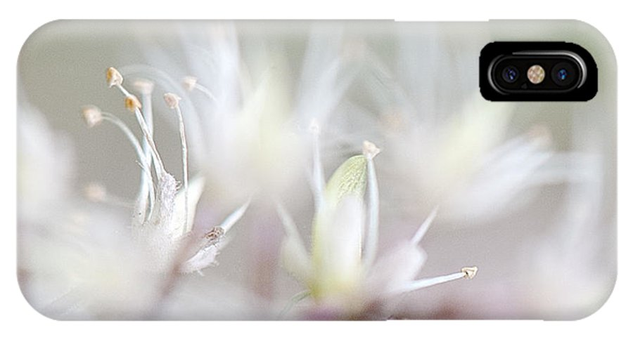 Lee Craig IPhone X Case featuring the photograph Foamflower Wide by Lee Craig