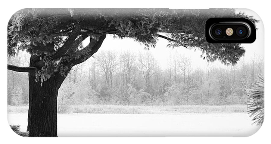 Tree IPhone X Case featuring the photograph Foggy Icestorm by Sophie Vigneault