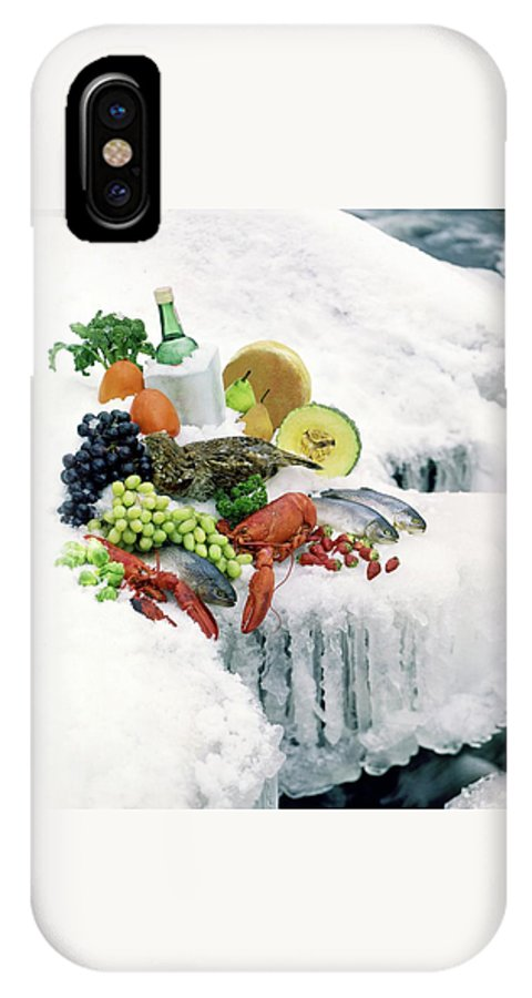 Food IPhone X Case featuring the photograph Food On Ice by Stan Young