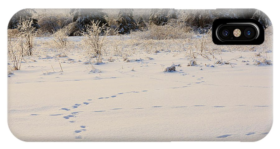 Footprints IPhone X Case featuring the photograph Footprints In Fresh Snow by Louise Heusinkveld