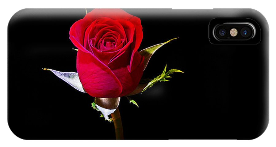 Rose IPhone X Case featuring the photograph For You by Stuart Harrison