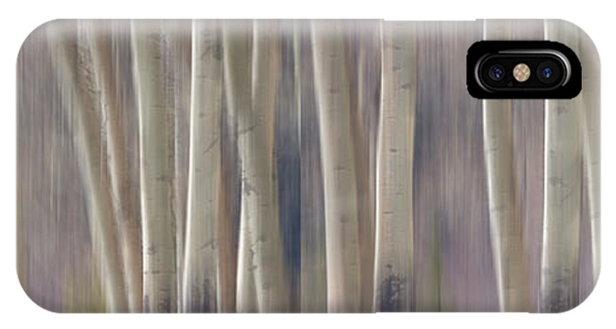 Forest IPhone X Case featuring the photograph Forest Of Dreams 2 Panorama by James BO Insogna