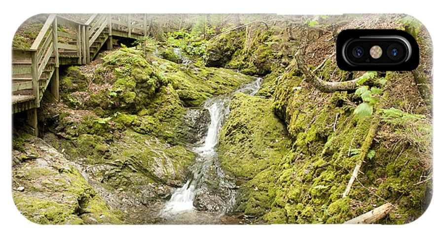 Forest IPhone X Case featuring the photograph Forest Stream by Nick Jene