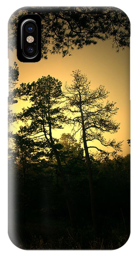 Landscape IPhone X Case featuring the photograph Forest Waltz by Nina Fosdick