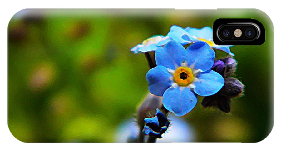 Nature IPhone X Case featuring the photograph Forget Me Not Bloom by Chris Berry