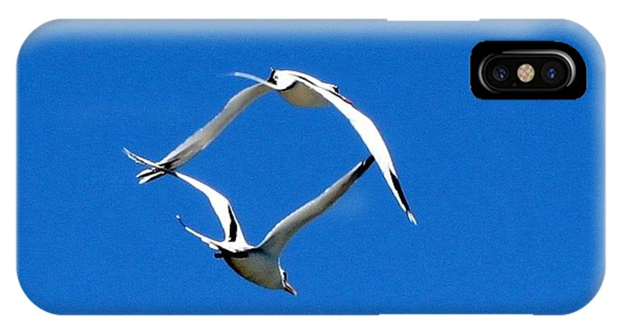 Birds IPhone X / XS Case featuring the photograph Formation by Susan Gibbons