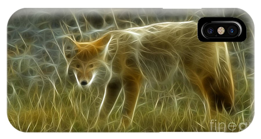 Fox IPhone X Case featuring the photograph Foxy Loxy by Bob Christopher