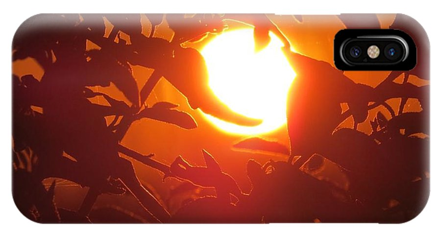 Sun IPhone X Case featuring the photograph Framed Sun by Nikki Watson  McInnes