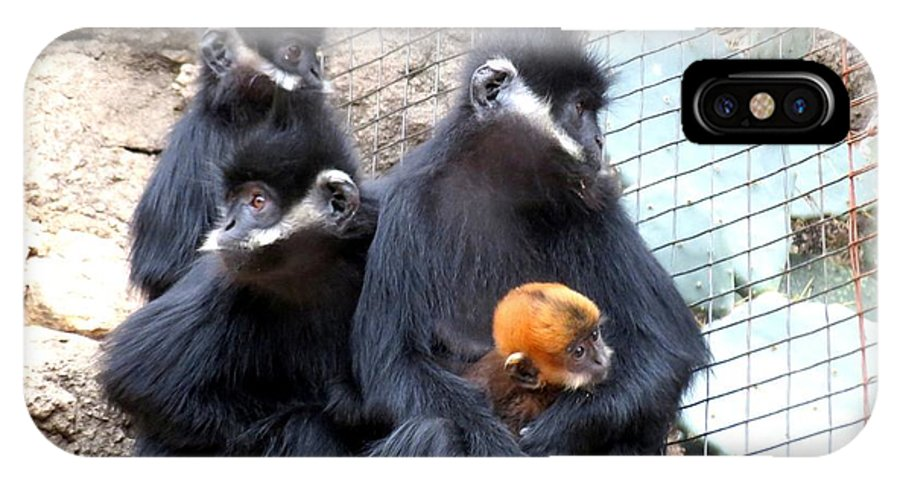 Texas IPhone X Case featuring the photograph Francois's Langur Family by Marilyn Burton