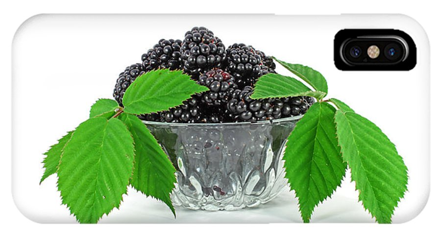 Berry IPhone X Case featuring the photograph Fresh Blackberries In Glass Bowl by Borislav Marinic