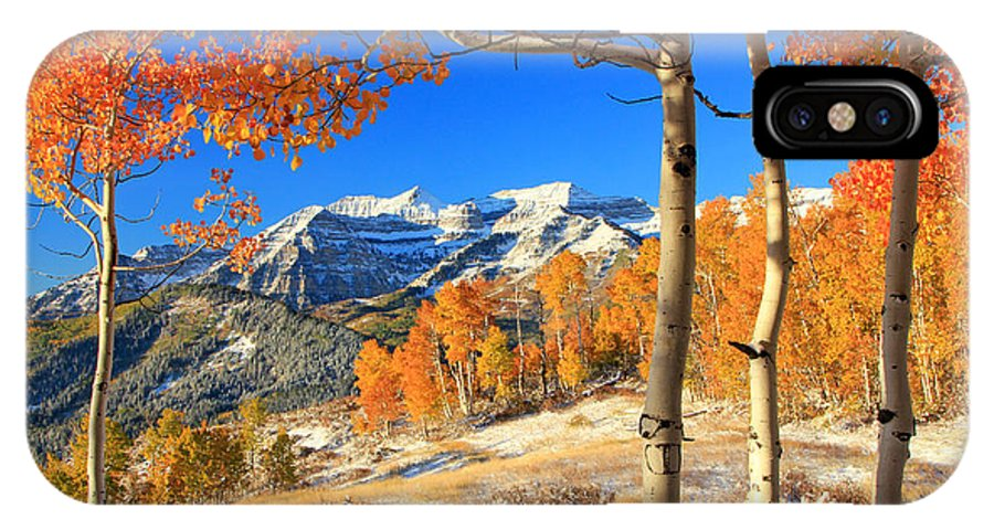Aspens IPhone X Case featuring the photograph Fresh Snow In The Aspens. by Johnny Adolphson