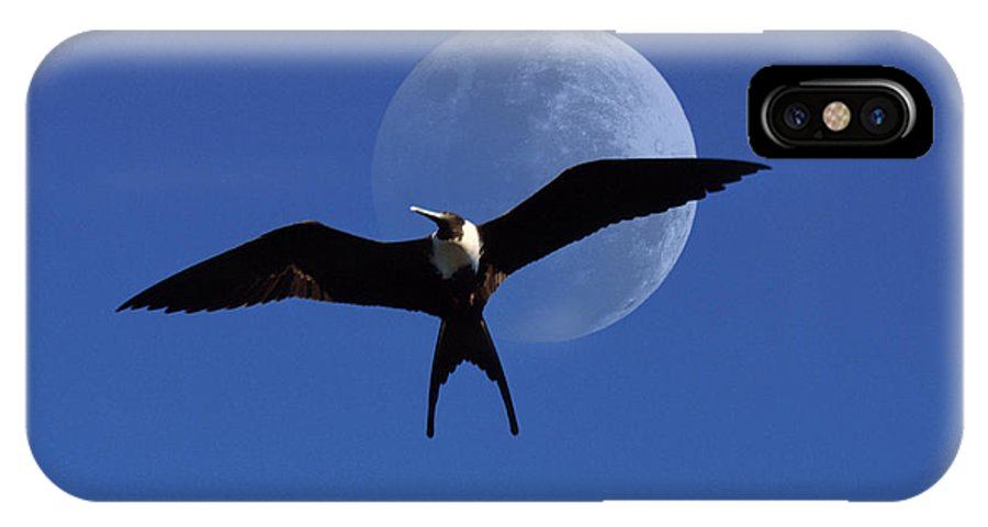 Frigate IPhone Case featuring the photograph Frigatebird Moon by Jerry McElroy