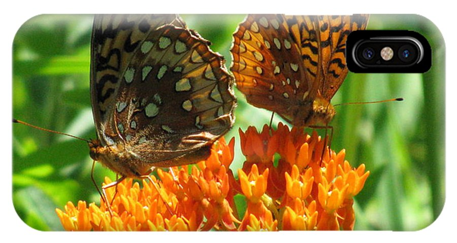 Butterflies IPhone X Case featuring the photograph Fritillaries by Kevin Blair