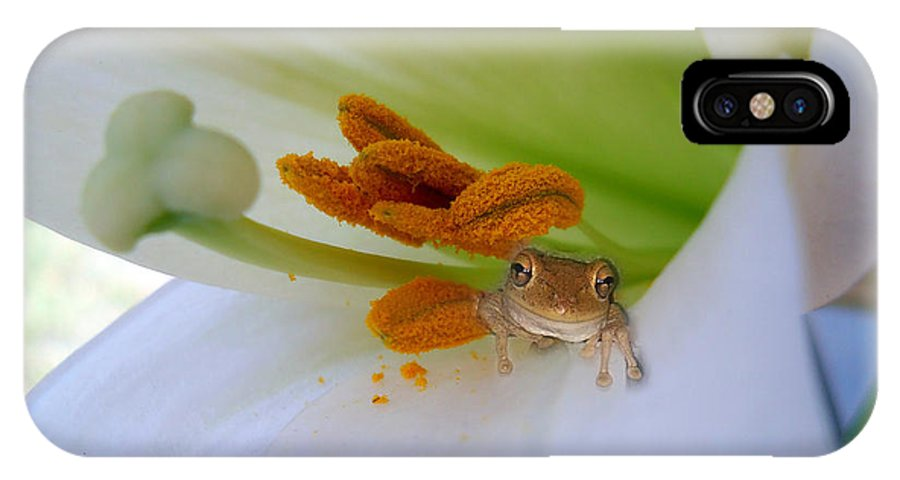 Frog IPhone X Case featuring the photograph Frog In The Lily by Judy Hall-Folde
