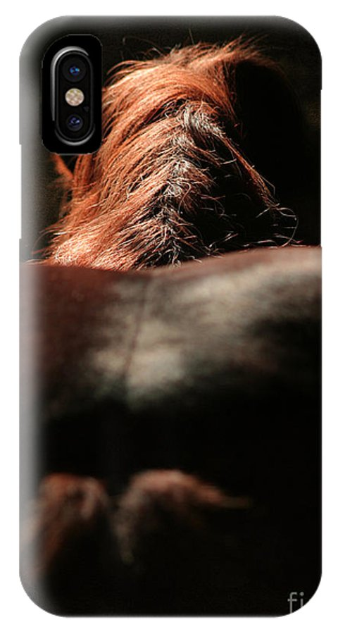 Horse IPhone X Case featuring the photograph From The Back by Angel Ciesniarska