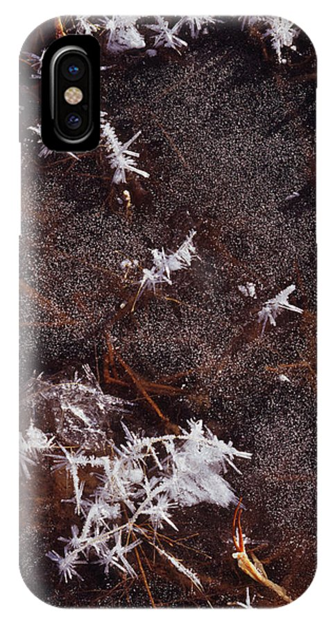 Nature Photography IPhone X Case featuring the photograph Frost Plumes by Tom Daniel