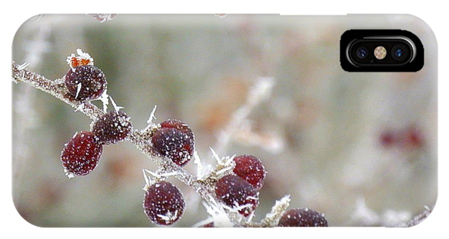 Berries Photo IPhone X Case featuring the photograph Frosted Berries by Jan Scholke