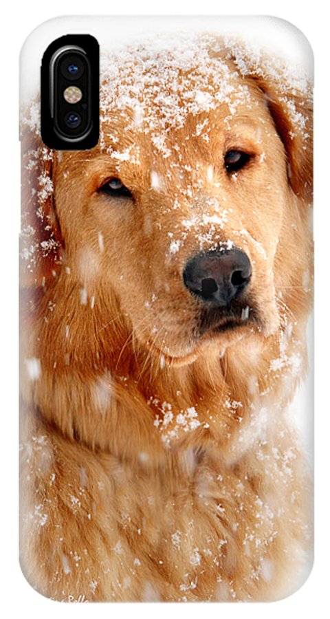 Frosty Mug IPhone X Case featuring the photograph Frosty Mug by Christina Rollo