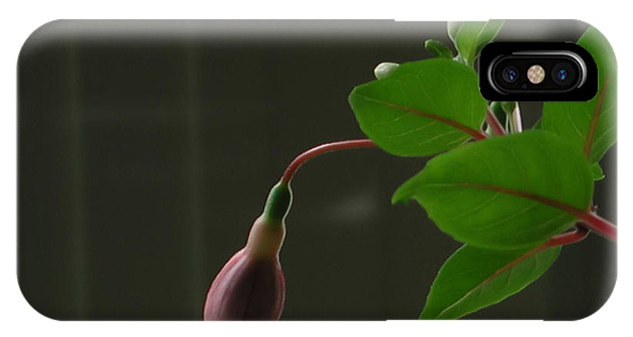 Fuchsia IPhone X Case featuring the photograph Fuchsia Bud by Kathi Shotwell