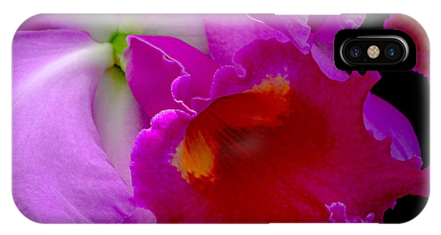 Cattleya IPhone X Case featuring the photograph Fuchsia Cattleya Orchid Squared by Julie Palencia