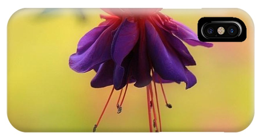 Flower IPhone X Case featuring the photograph Fuschia by Sharon Johnston