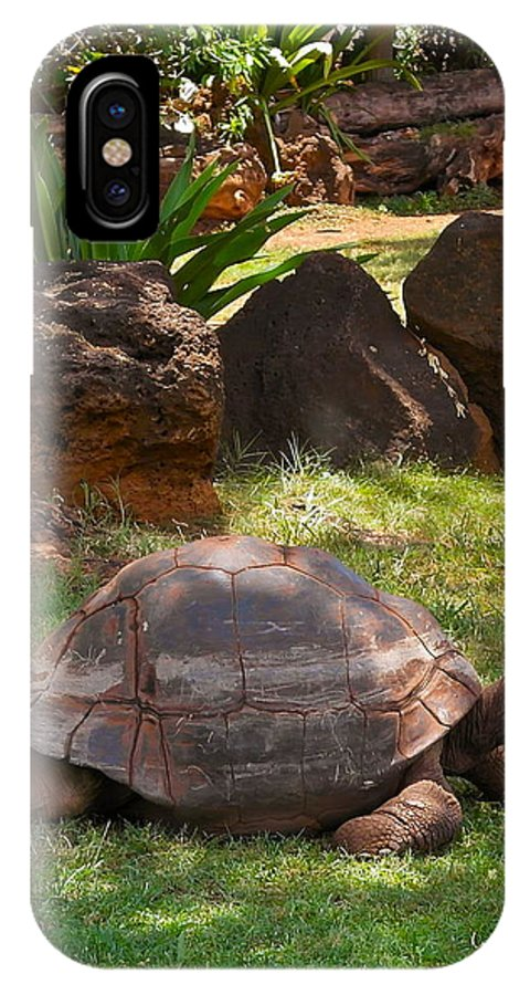 Galapagos Turtle IPhone X Case featuring the photograph Galapagos Turtle At Honolulu Zoo by Michele Myers