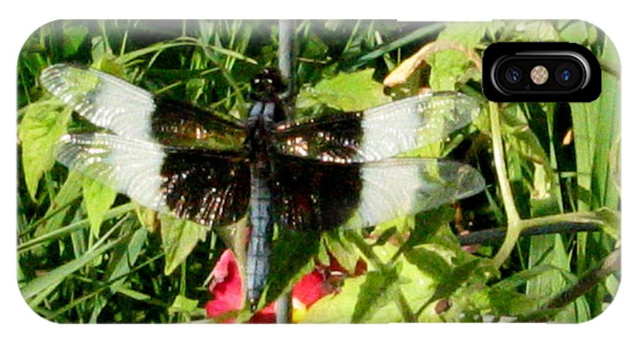Dragonfly IPhone X Case featuring the photograph Garden Dragonfly by Lois Handel
