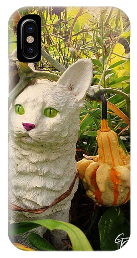 White IPhone X / XS Case featuring the photograph Garden Kitty In The Fall by GG Burns