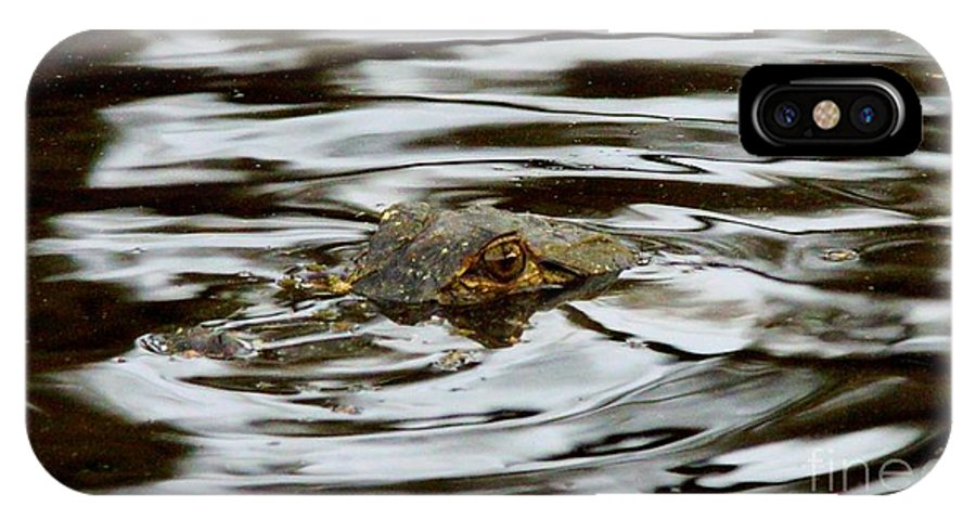 Gator Eyes IPhone X Case featuring the photograph Gator Eyes by William Bosley