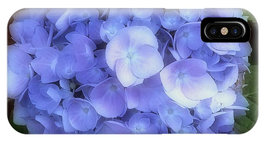 Hydrangea IPhone X Case featuring the photograph Gauzy Blues by RC DeWinter