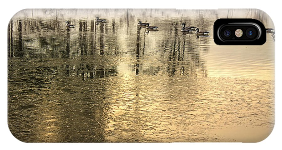 Gold IPhone X Case featuring the photograph Geese On Golden Pond by Jason Politte